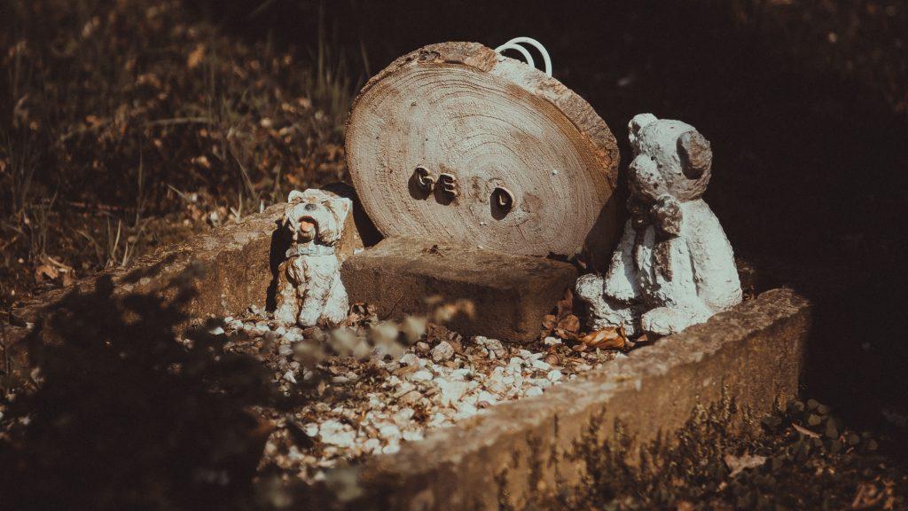 Asserbegraafplaats, Assen © 2018 Matthijs Jonker Fotografie