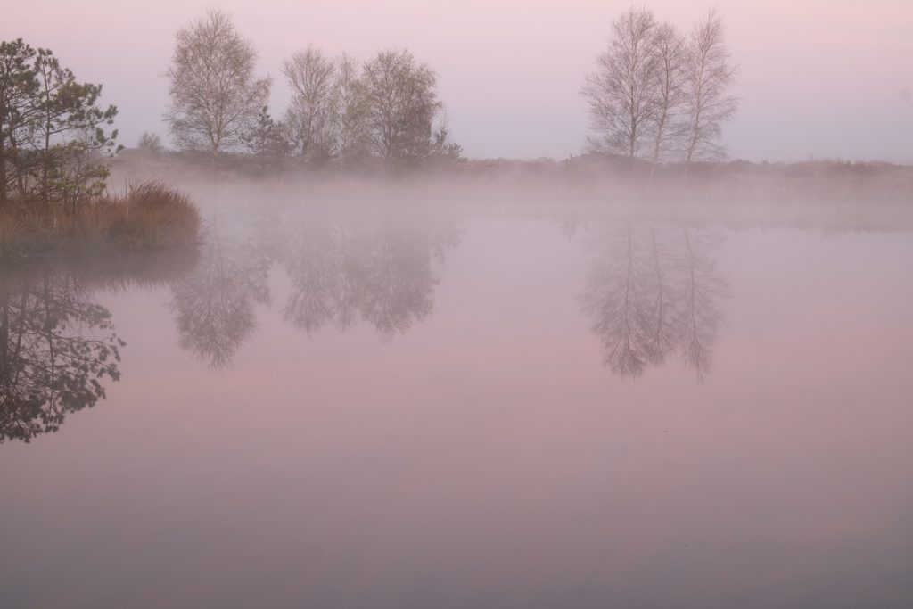 Mistige ochtend Balloërveld Drenthe © 2018 Matthijs Jonker Fotografie