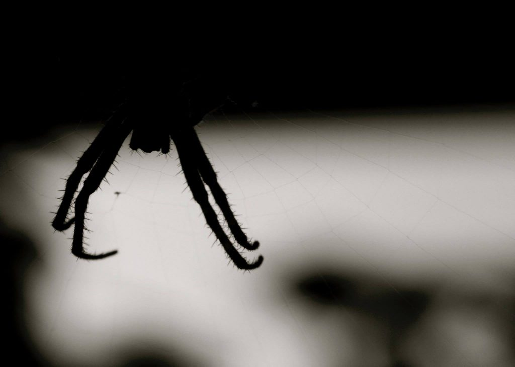 Silhouet spin, Assen © 2015 Matthijs Jonker Fotografie